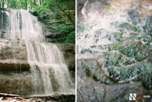 Hamilton Waterfalls - Toronto Film Wedding Photographer