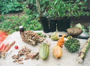 finca luna nueva organic foods shot on film fuji 400h
