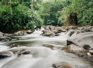 Costa Rica rain forest river shot on fuji film 400h